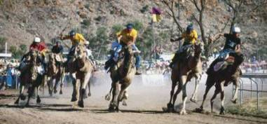 The Camel Cup Alice Springs