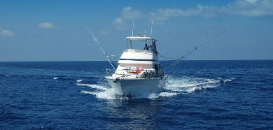 Sports Fishing Boat