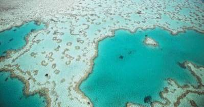 The Amazing Great Barrier Reef