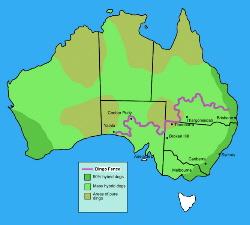 Dingo Fence Map