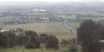 View of Vineyards of the Barossa