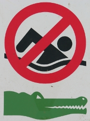 Crocodile Warning Sign - No Swimming