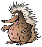 Cartoon Australian Echidna Pointing