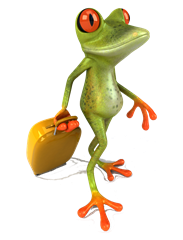Cartoon Australian Frog On A Road With A Suitcase