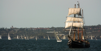 Replica Tall Ship In The Sydney Harbour