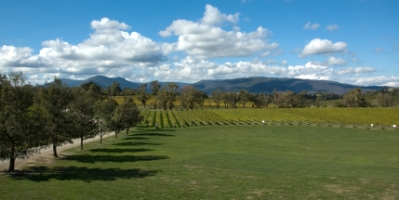 Vineyards of the Yarra Valley Victoria