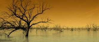 Outback Flood
