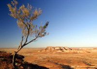 South Australia Outback