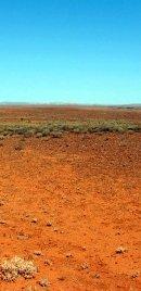 Australian Desert Landscape
