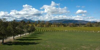 Vineyards of the Yarra Valley Victoria